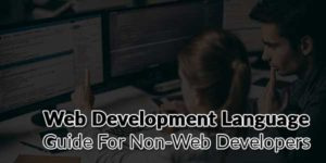 Web-Development-Language-Guide-For-Non-Web-Developers