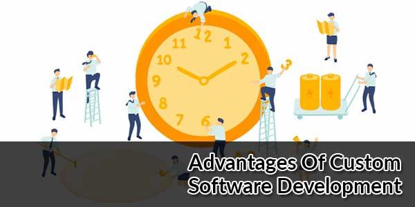 Advantages-Of-Custom-Software-Development