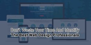 Don't-Waste-Your-Time-And-Identify-The-Best-Web-Design-Professionals