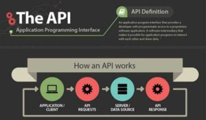 The-API-(Application-Program-Interface)