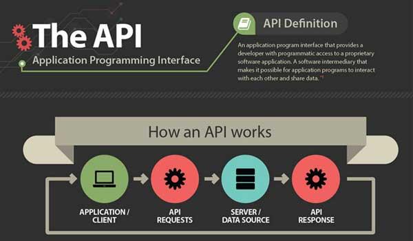 The-API-(Application-Program-Interface)