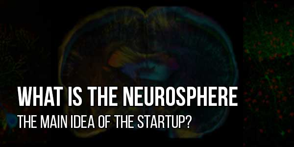 What-Is-The-Neurosphere-The-Main-Idea-Of-The-Startup