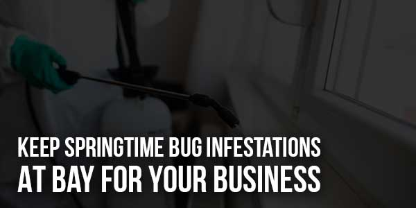Keep-Springtime-Bug-Infestations-At-Bay-For-Your-Business