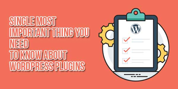 Single-Most-Important-Thing-You-Need-To-Know-About-WordPress-Plugins