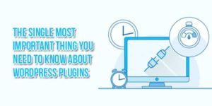 The-Single-Most-Important-Thing-You-Need-To-Know-About-WordPress-Plugins