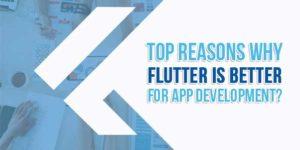 Top-Reasons-Why-Flutter-Is-Better-For-App-Development